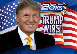 Trump has won — или об американской системе выборов