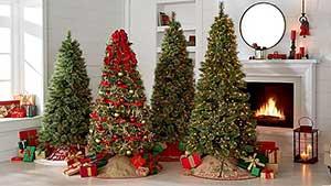 Стихи о рождественской ёлочке для детей